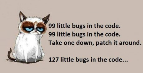 funny-picture-software-developer-song
